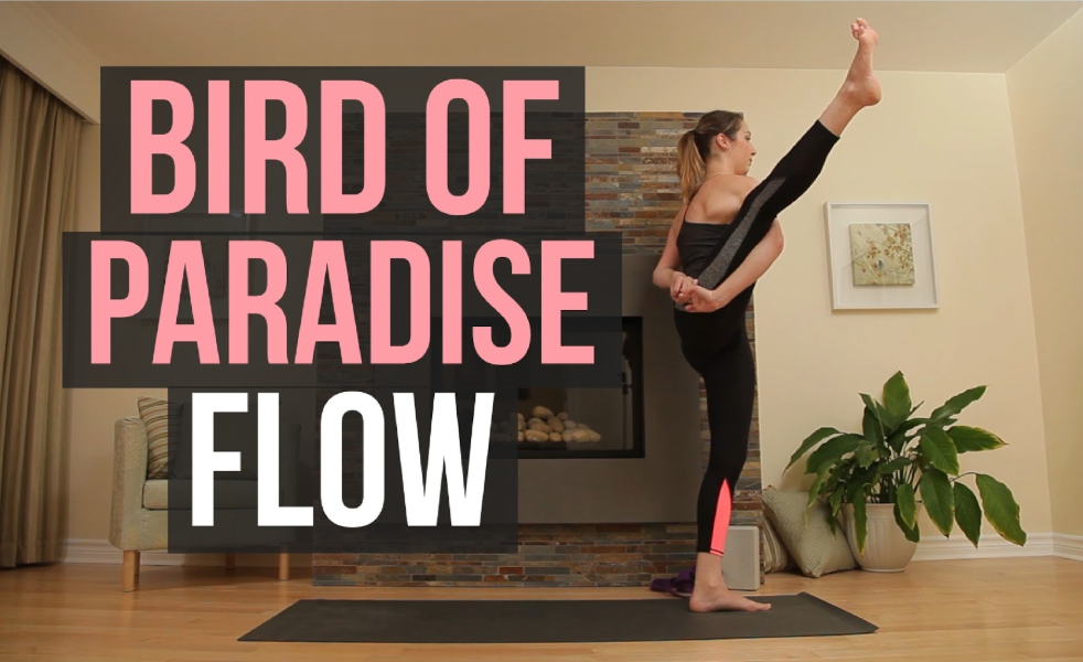 Bird of Paradise – 50 min Vinyasa Flow Class