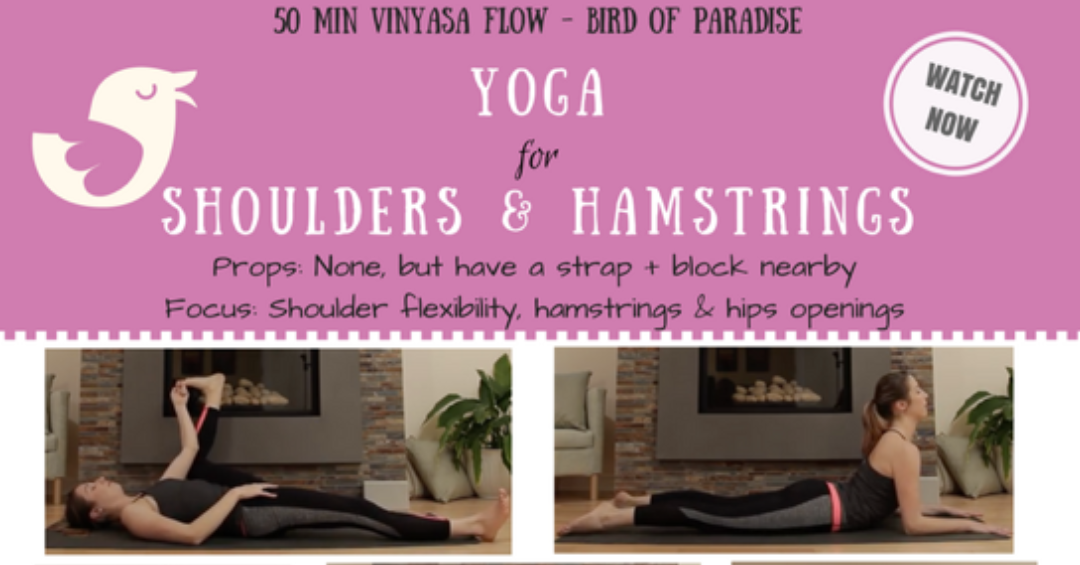 Bird of Paradise – New Yoga Flow