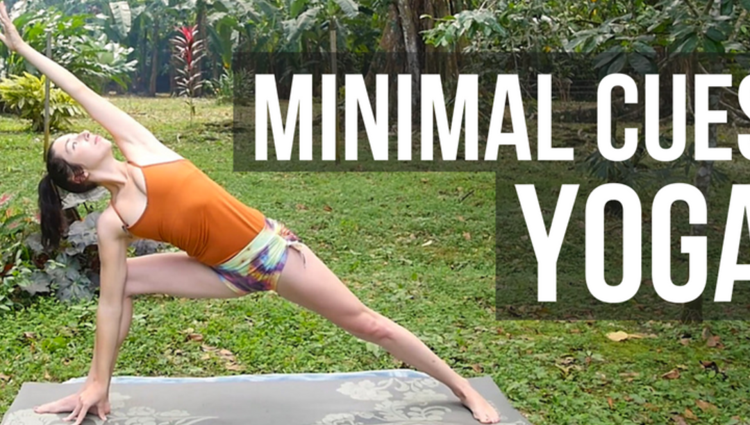 Minimal Cues Yoga Class for Yoga Teachers {30 min}
