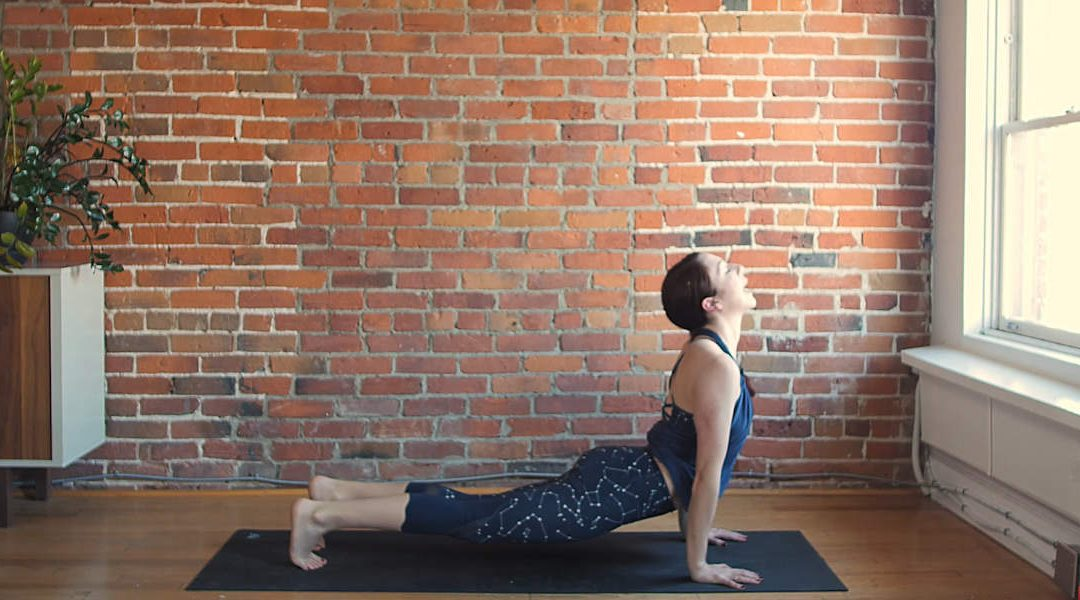 Slow Flow Vinyasa Flow for Flexibility