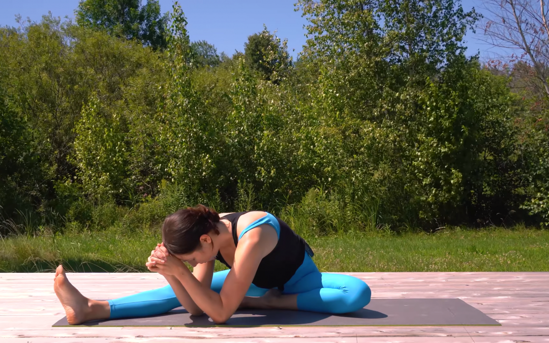 Long Held Yin Poses for an Advanced Practice